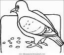 animales/pajaros/uccelli_061.JPG