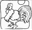 animales/pajaros/uccelli_063.JPG