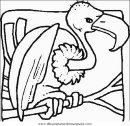 animales/pajaros/uccelli_070.JPG