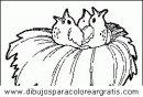 animales/pajaros/uccelli_088.JPG
