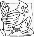 animales/pajaros/uccelli_102.JPG