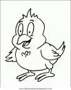 animales/pajaros/uccelli_105.JPG
