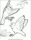 animales/pajaros/uccelli_175.JPG