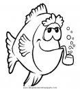 animales/peces/peces_061.JPG