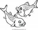 animales/peces/salmon_2.JPG