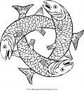 animales/peces/salmon_4.JPG