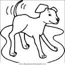animales/perros/perros_043.JPG