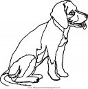 animales/perros/perros_079.JPG