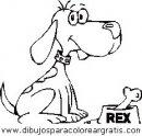 animales/perros/perros_108.JPG