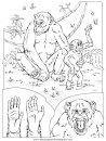 animales/simias/simias_18.JPG