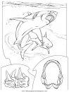 animales/tiburones/tiburones_11.JPG