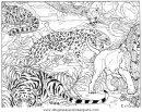 animales/tigres/tigres_05.JPG