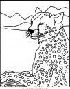 animales/tigres/tigres_09.JPG