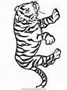 animales/tigres/tigres_27.JPG