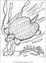 animales/tortugas/tortugas_02.JPG