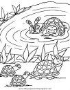 animales/tortugas/tortugas_29.JPG