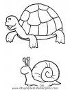 animales/tortugas/tortugas_34.JPG