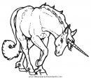 fantasia/unicornios/unicornios_063.JPG