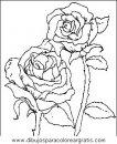 naturaleza/flores/flores_021.JPG