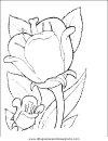 naturaleza/flores/flores_071.JPG