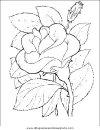 naturaleza/flores/flores_072.JPG