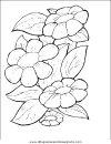 naturaleza/flores/flores_075.JPG