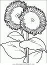naturaleza/flores/flores_082.JPG