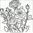 naturaleza/flores/flores_086.JPG