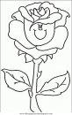 naturaleza/flores/flores_095.JPG