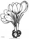 naturaleza/flores/flores_113.JPG