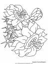 naturaleza/flores/flores_170.JPG
