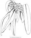 naturaleza/flores/orquidea_orquideas_7.JPG