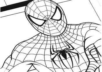 Dibujos para colorear y pintar gratis for Disegni spiderman da colorare gratis